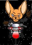 Moto Club des Fennecs Albiassains